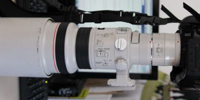 Canon EF300mm f2.8L USM Test Shoot With A Mono Pod